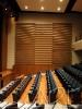 AUDITORIO CLÍNICA VALLE DE LILI (Cali, Valle del Cauca) - Diseños acústicos. <br> Diseño sistemas de audio, video, iluminación ambiental y artística, control y automatización.