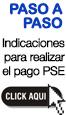 Instrucciones PSE