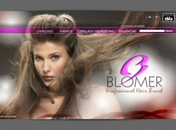 paginas web de Blomer Profesional Hair Brush